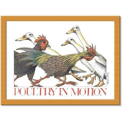 Buy the Poultry in Motion Cushion Lap Tray online at smiths of loughton.com