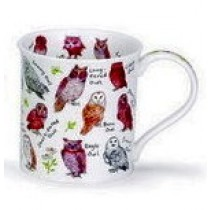 Buy the Dunoon Bute Birdlife Owl mug online at smithsofloughton.com