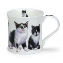 Buy the Dunoon Kittens Black and White Mug online at smithsofloughton.com