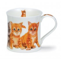 Buy the Dunoon Kittens Ginger Mug online at smithsofloughton.com