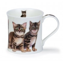 Buy the Dunoon Kittens Tabby Mug online at smithsofloughton.com