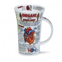 Buy the Dunoon Organs of the Human Body Mug online at smithsofloughton.com